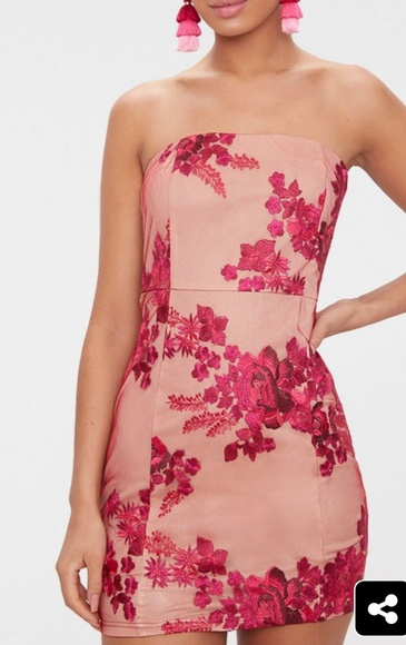 Fuchsia Bandeau Embroidered Lace Bodycon Dress Nwt